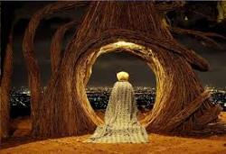 Daya Tarik Obyek Wisata Hutan Pinus Pengger Jogja